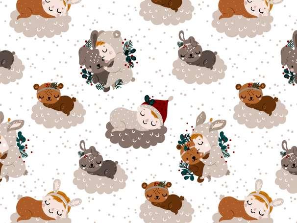 French Terry - Weihnachtswunder - Wölkchen