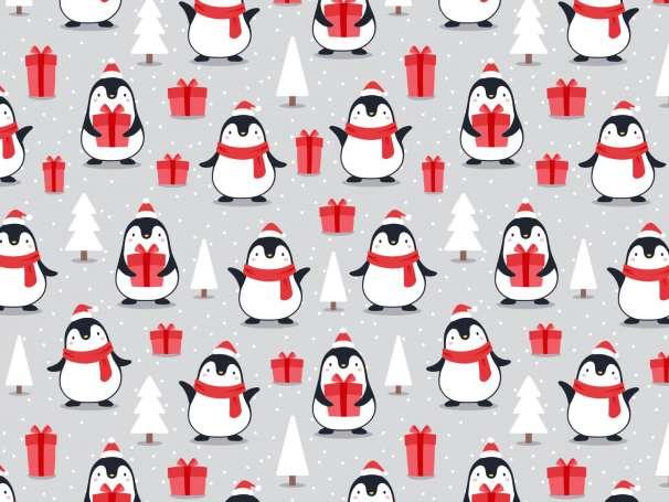 French Terry - Pinguin mit Geschenk